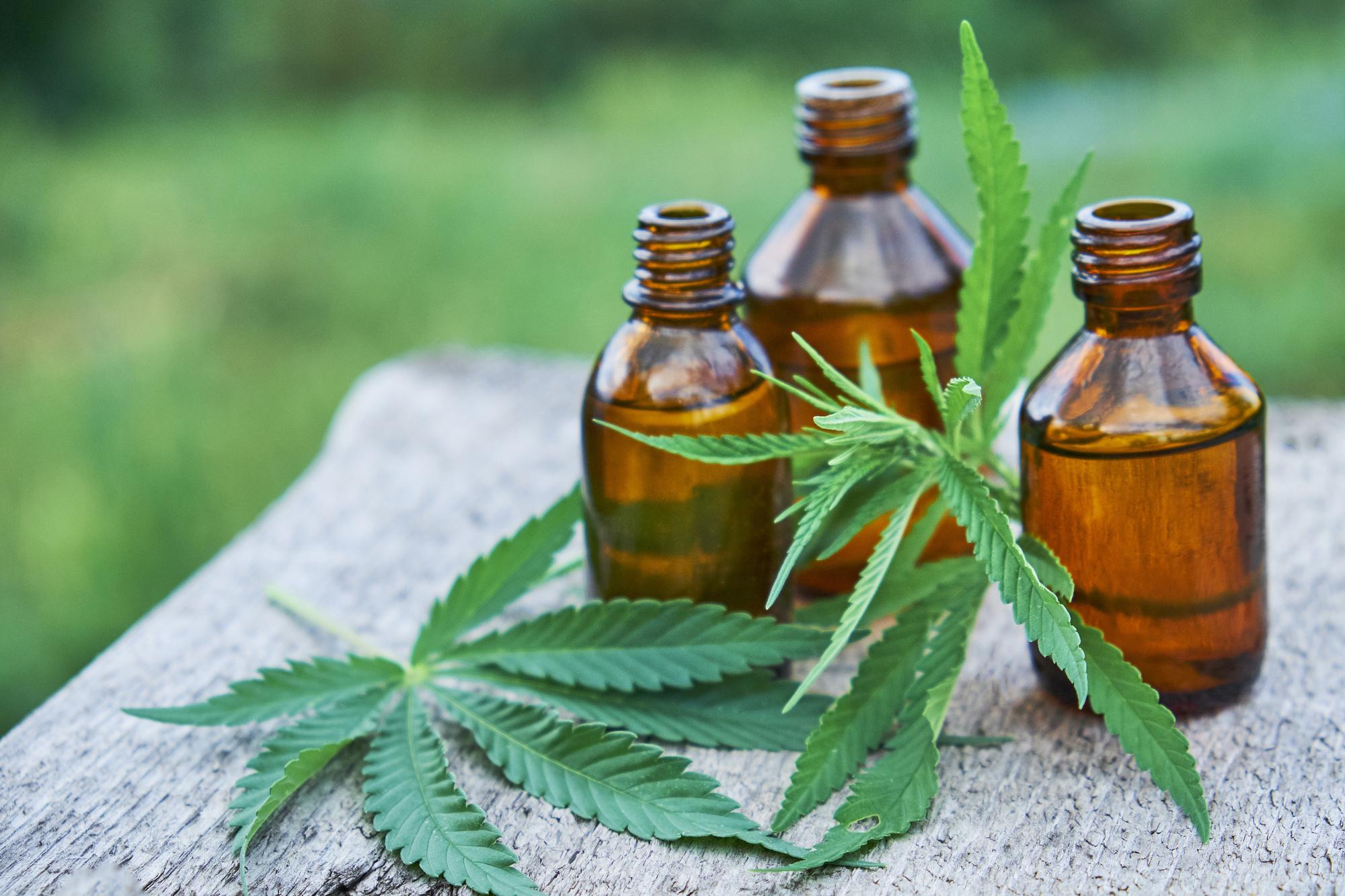 CBD oil and marijuana leaves